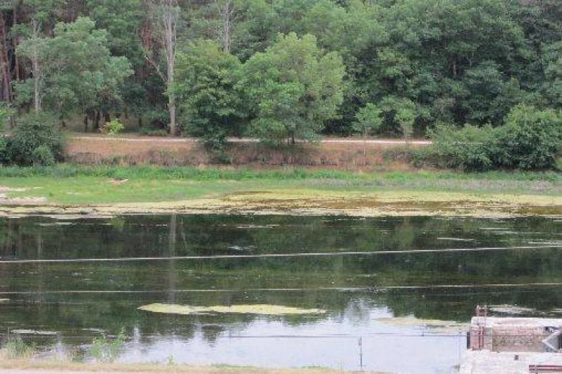 Location de vacances - Gîte à Montrichard - Vue sur le Cher