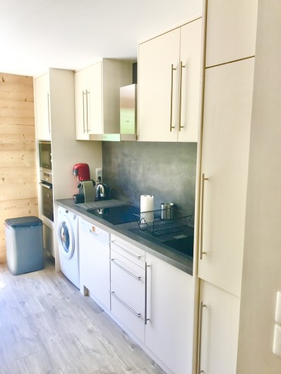 Location de vacances - Appartement à Saint-Sorlin-d'Arves - cuisine avec lave linge séchant