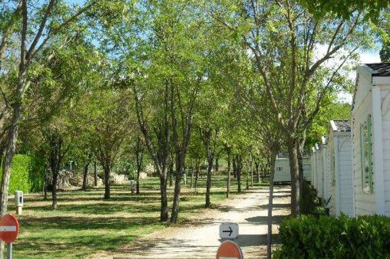 Location de vacances - Camping à Saint-Remèze