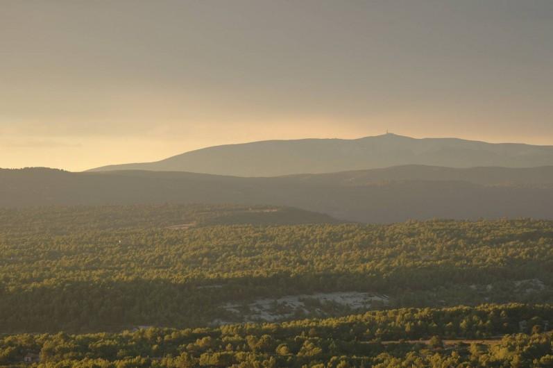 Location de vacances - Maison - Villa à Ménerbes - La vue du Mont Ventoux.