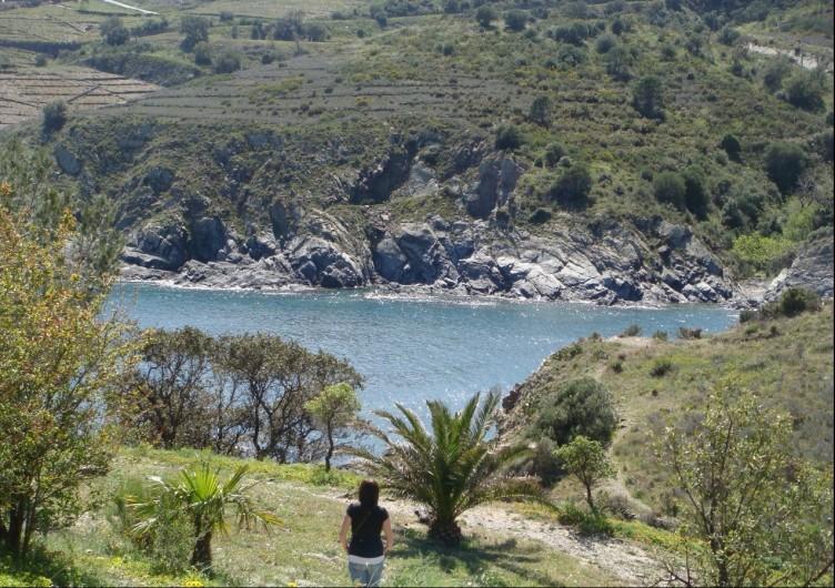 Location de vacances - Appartement à Cerbère - Mer et nature méditerranéenne. Crique au pied de l'appartement