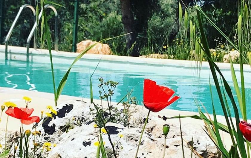 Location de vacances - Villa à Ostuni