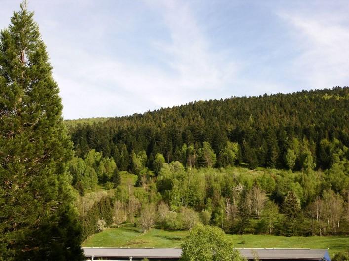 Location de vacances - Gîte à La Bresse - Vue du Gîte