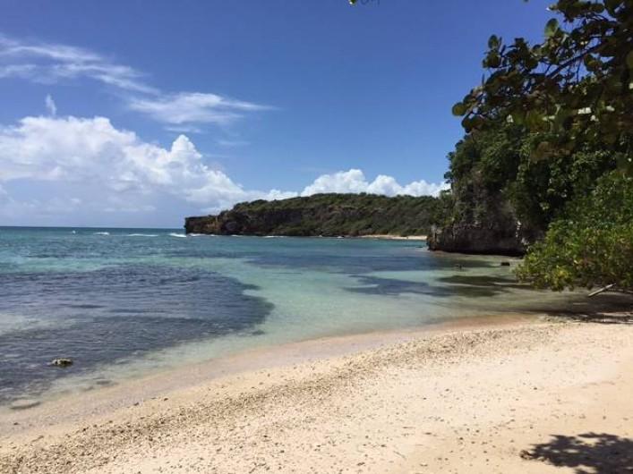 Location de vacances - Villa à Sainte-Anne - Plage de l'anse à jacques à 15 mn à pieds