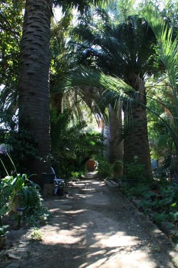 Location de vacances - Appartement à Collioure - Allée principale du parc donnant sur porte d'entrée