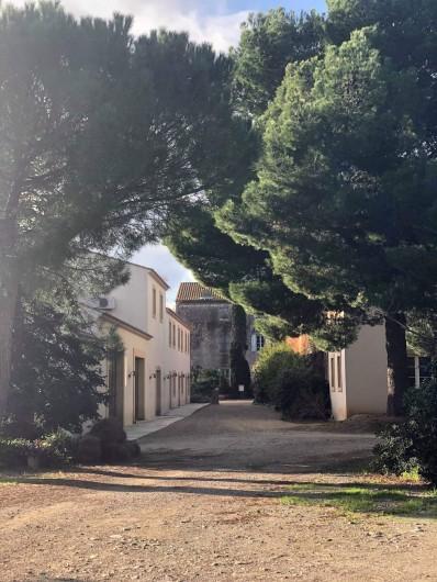 Location de vacances - Gîte à Mirepeisset - Entrée