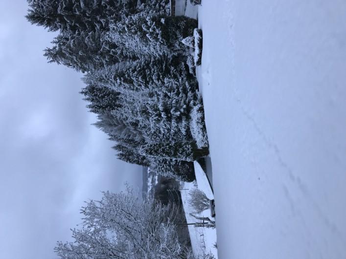 Location de vacances - Chalet à Anould - VUE EN HIVER