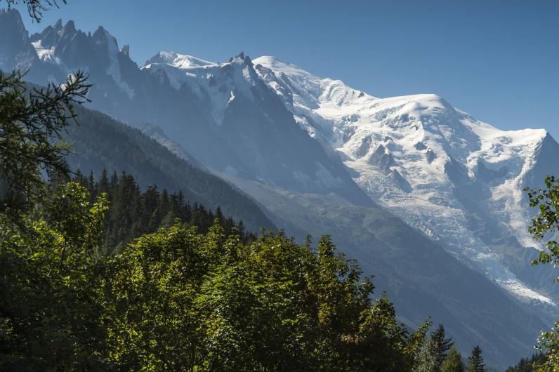 Location de vacances - Chalet à Chamonix-Mont-Blanc - Vue sur le Mont Blanc depuis le chalet