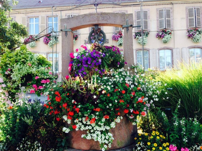 Location de vacances - Appartement à Oberhergheim - Devant la Mairie du village