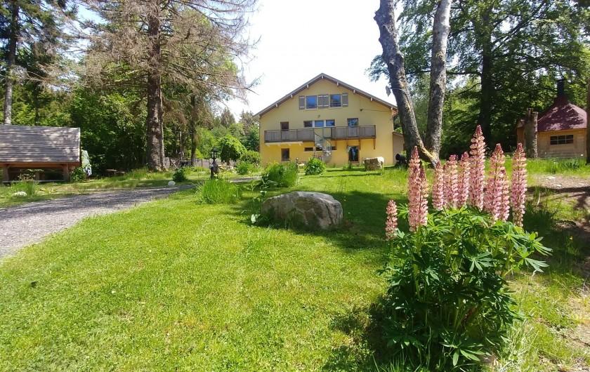Location de vacances - Chalet à Gérardmer - PARC
